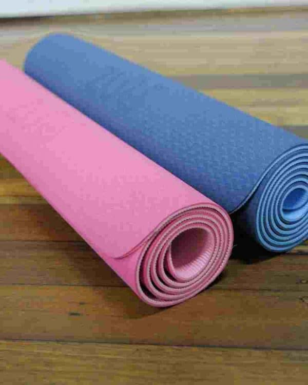 lightweight Lion Yoga Mat in blue and pink colours